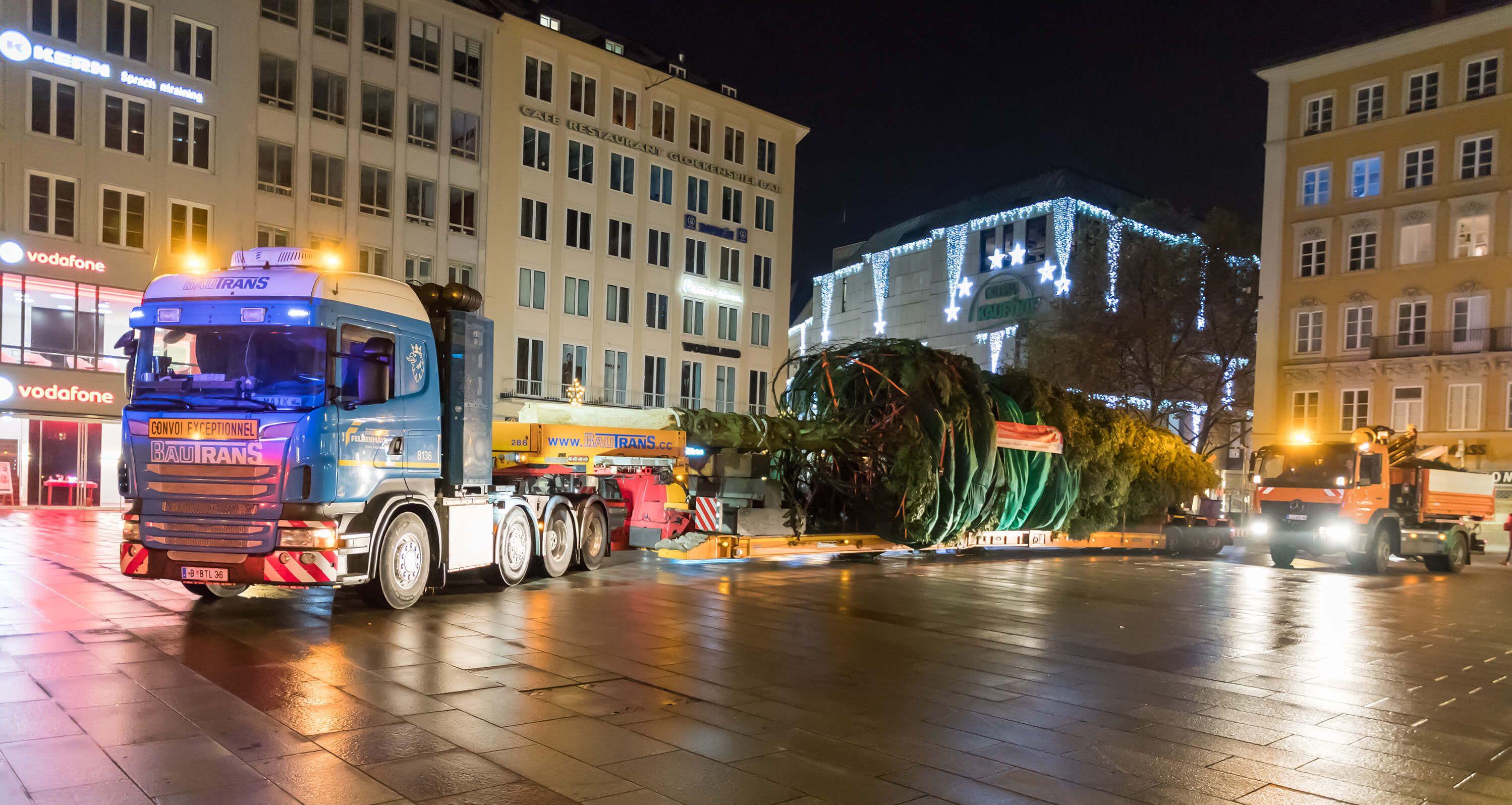 Spezialtransport bringt Weihnachtsbaum Slider